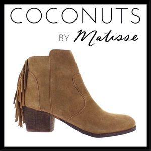 Coconuts by Matisse